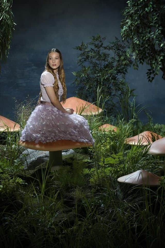 Sophie Lowe As Alice Once Upon A Time In Wonderland