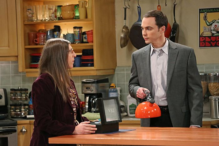 Mayim Bialik and Jim Parsons The Big Bang Theory The First Pitch Insufficiency