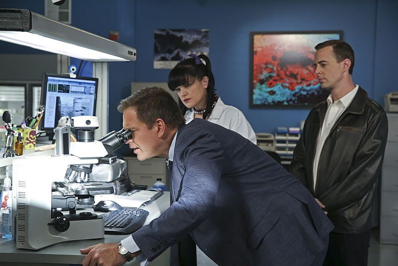 """16 Years"" -- The NCIS murder case of a retired Navy Lieutenant Commander forces Ducky to reveal his participation in a secret society that solves cold cases, on NCIS, Tuesday, Nov. 3 (8:00-9:00 PM, ET/PT), on the CBS Television Network. Pictured left to right: Michael Weatherly, Pauley Perrette and Sean Murray Photo: Cliff Lipson/CBS ©2015 CBS Broadcasting, Inc. All Rights Reserved"
