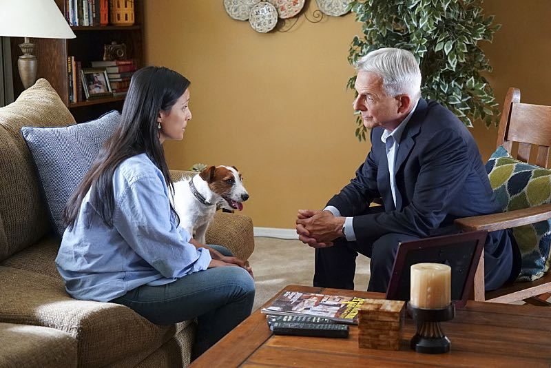 """Shell Game"" -- After a kidnapped petty officer escapes her captor, NCIS uncovers a connection to her missing husband. Also, Abby knits the NCIS newbies personalized gifts, on NCIS, Tuesday, Oct. 25 (8:00-9:00 PM, ET/PT), on the CBS Television Network. Pictured: Emily Alabi, Mark Harmon. Photo: Bill Inoshita/CBS ©2016 CBS Broadcasting, Inc. All Rights Reserved"