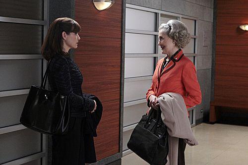 THE GOOD WIFE Season 3 Episode 20 No Ordinary Lie