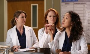 GREY'S ANATOMY Season 9 Episode 11 The End Is The Beginning Is The End