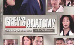 Greys Anatomy Season 10 DVD