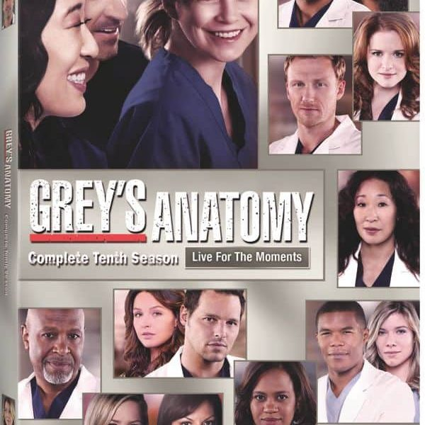 Greys Anatomy Season 10 DVD