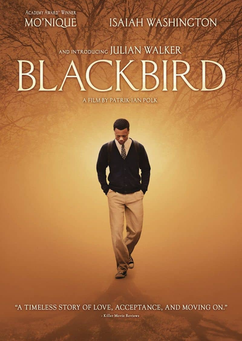 Blackbird DVD