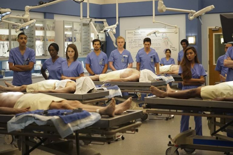 greys anatomy increases patient satisfaction essay The studies are claiming that the show could lead to unrealistic expectations and decreased patient satisfaction the grey's anatomy.