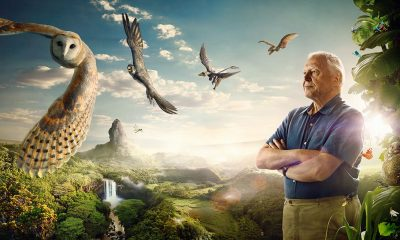 David-Attenborough-Conquest-of-The-Skies