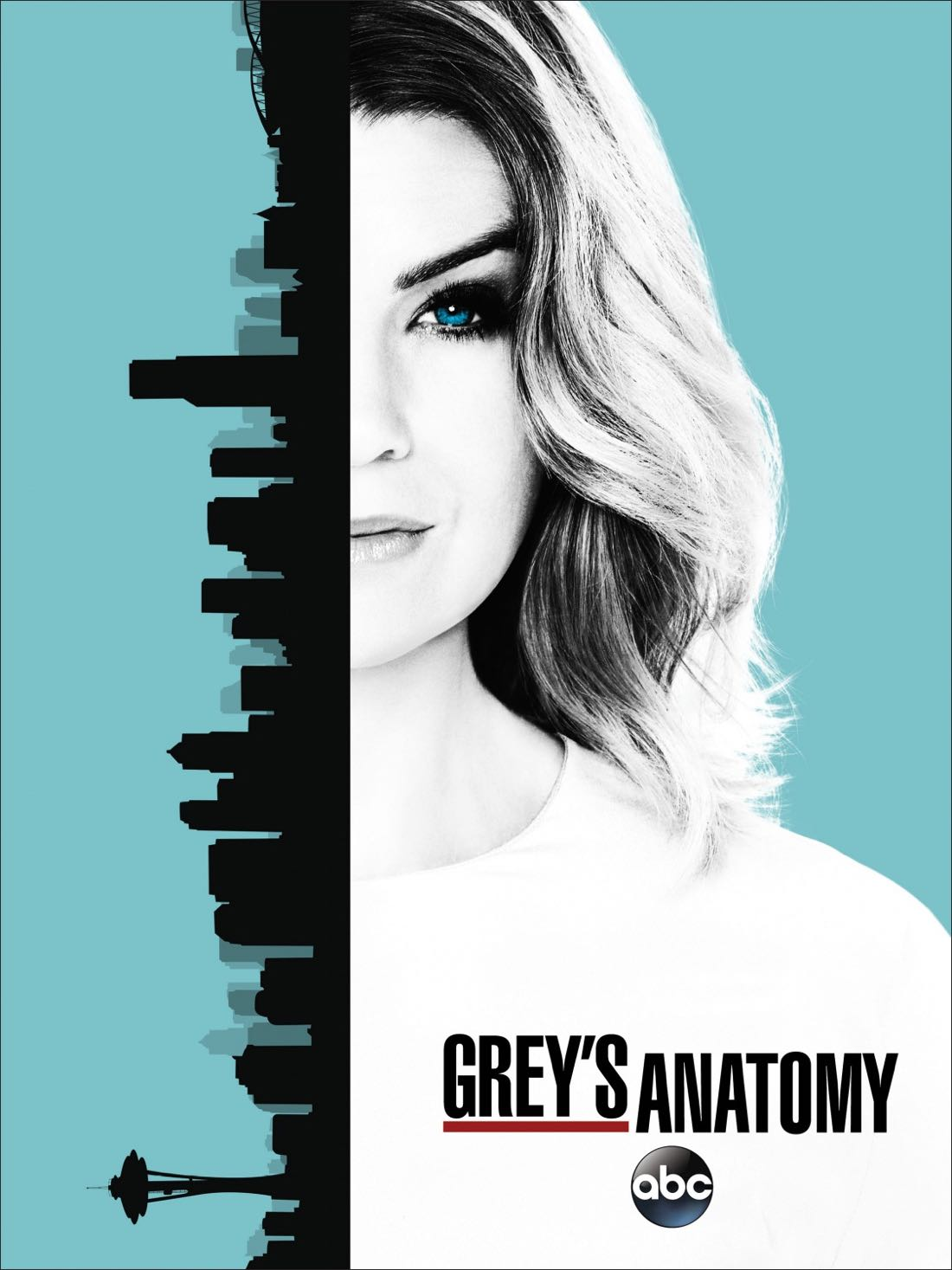 GREY\'S ANATOMY Season 13 Poster | SEAT42F