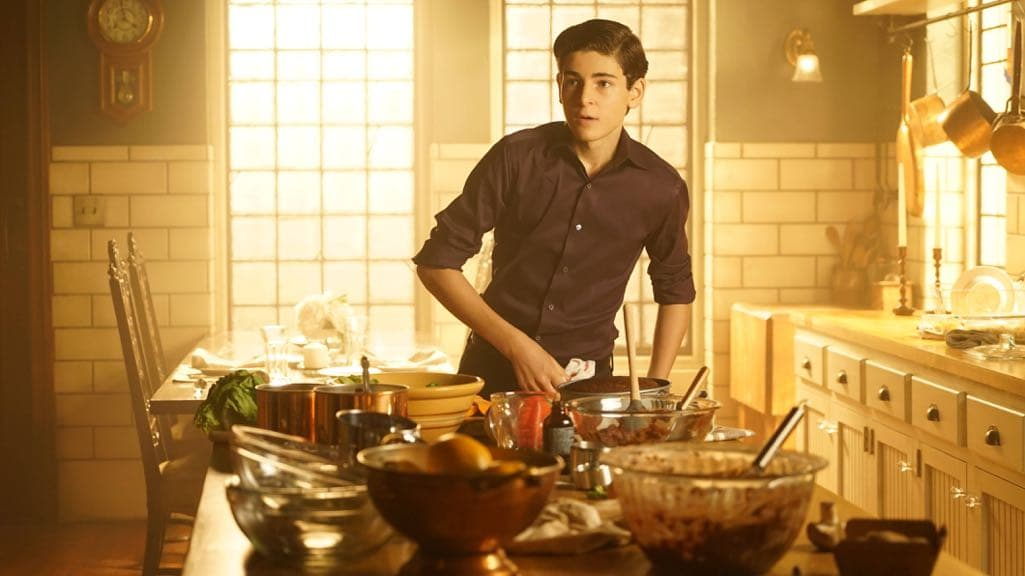 "GOTHAM: David Mazouz in the ""Mad City: Red Queen"" episode of GOTHAM airing Monday, Oct. 31 (8:00-9:01 PM ET/PT) on FOX. ©2016 Fox Broadcasting Co. Cr: Nicole Rivelli/FOX."