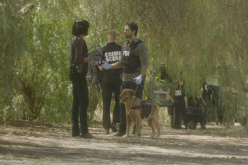 """Keeper"" -- The BAU team searches for a serial killer along the Appalachian Trail in rural Virginia, on CRIMINAL MINDS, Wednesday, Oct. 26 (9:00-10:00 PM, ET/PT), on the CBS Television Network. Pictured: Aisha Tyler (Dr. Tara Lewis), Adam Rodriguez (Luke Alvez) Photo: CBS ©2016 CBS Broadcasting, Inc. All Rights Reserved"