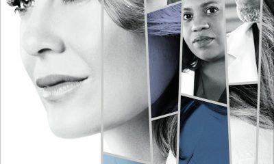 greys-anatomy_season_14-Poster