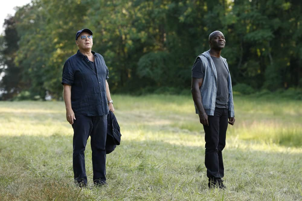 "THE BLACKLIST -- ""Miss Rebecca Thrall (#76)"" Episode 503 -- Pictured: (l-r) Raymond ""Red"" Reddington, Hisham Tawfiq as Dembe Zuma -- (Photo by: Will Hart/NBC)"