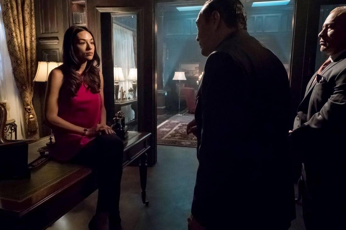 "GOTHAM: Crystal Reed in the ""A Dark Knight: The Demon's Head"" episode of GOTHAM airing Thursday, Oct. 12 (8:00-9:01 PM ET/PT) on FOX. CR: Jeff Neumann/FOX"