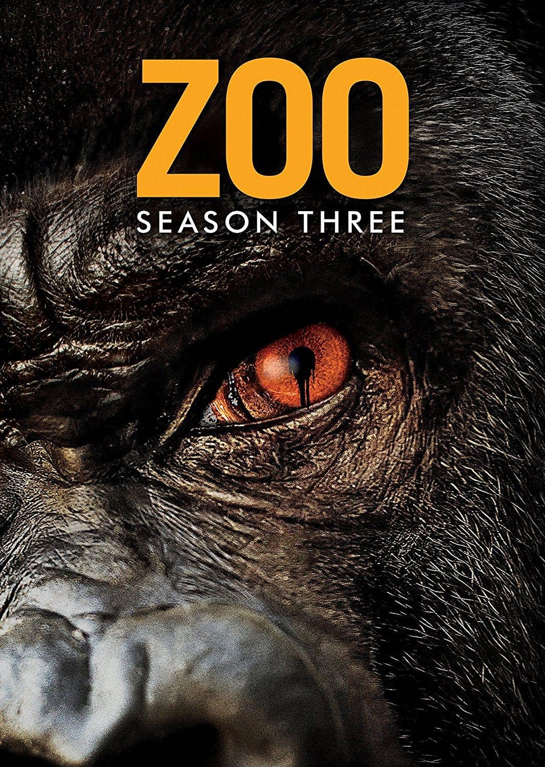 Zoo Serie Staffel 3