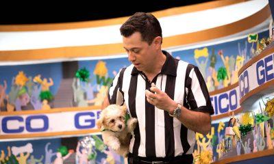 Dan Schachner Ref Puppy Bowl