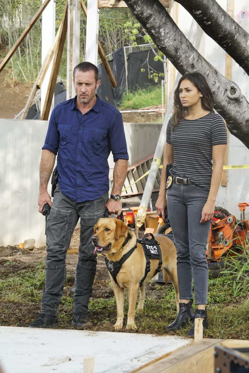 HAWAII FIVE-0 Season 8 Episode 16 Photos | SEAT42F
