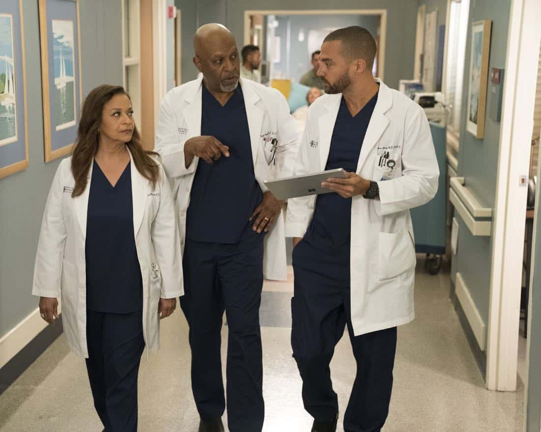 GREY\'S ANATOMY Season 14 Episode 16 Photos Caught Somewhere In Time ...
