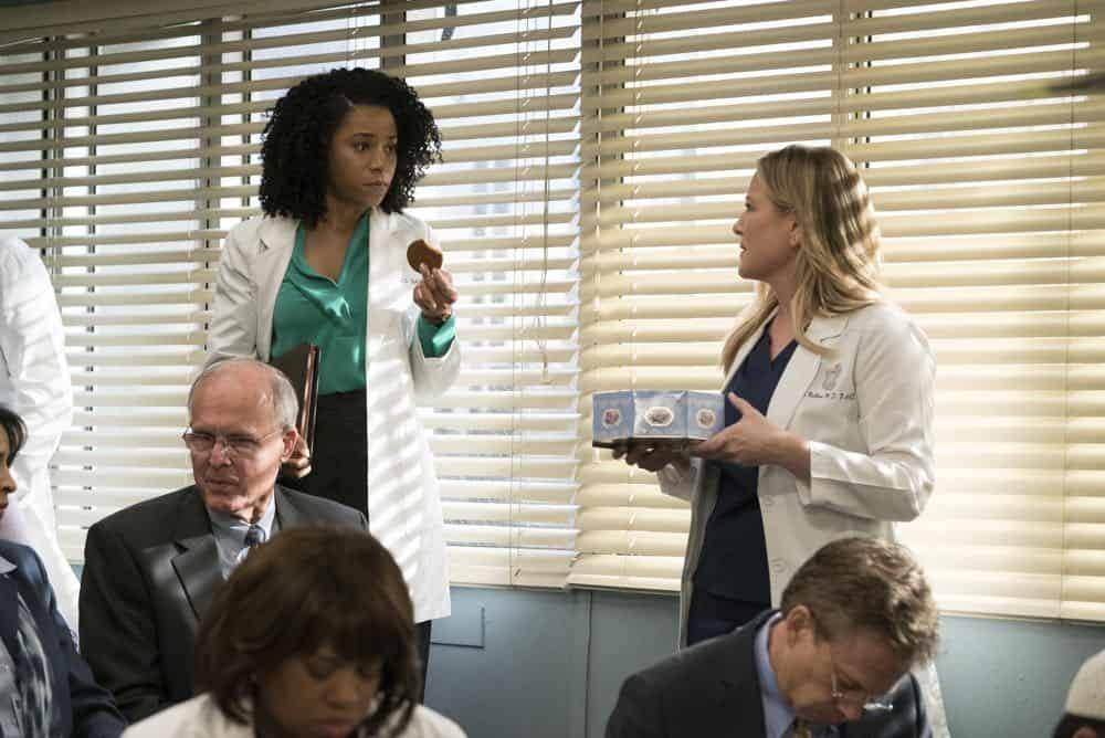 GREY\'S ANATOMY Season 14 Episode 20 Photos Judgment Day | | SEAT42F
